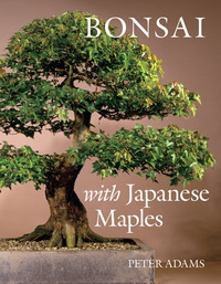 Bonsai with japanese maples 2_resize